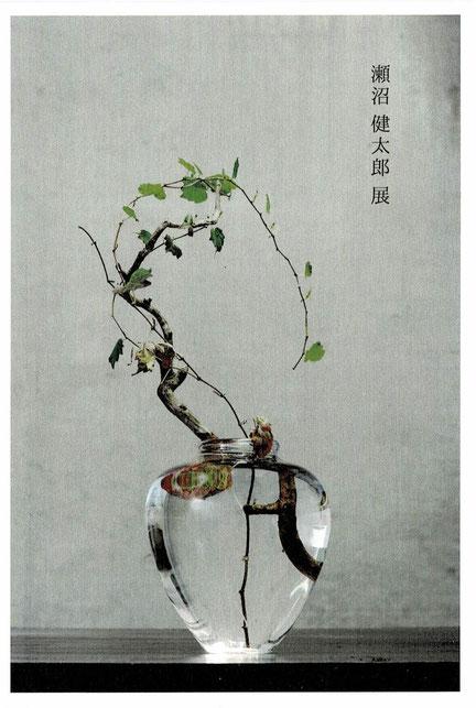 瀬沼 健太郎展